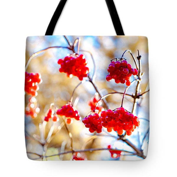 Tote Bag featuring the photograph Arrowwood Berries by Alexander Senin