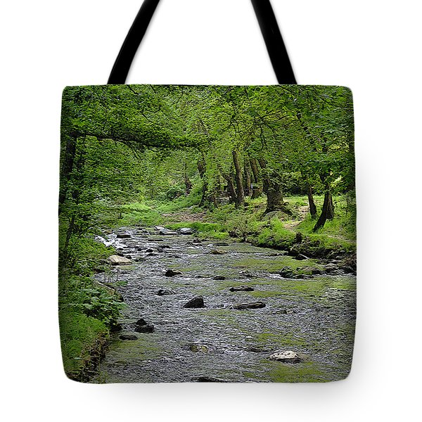Art In The Forest Tote Bag by Milena Ilieva