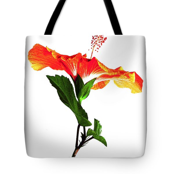 Art Orange Tote Bag