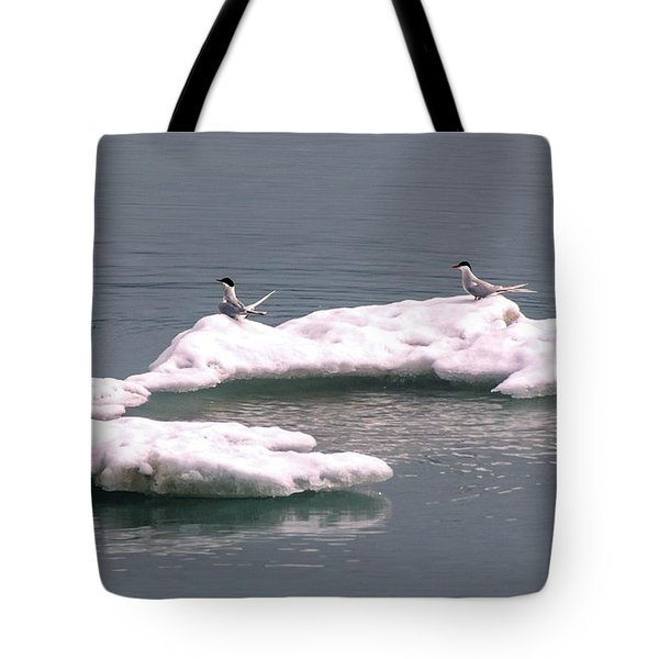 Arctic Terns On A Bergy Bit Tote Bag