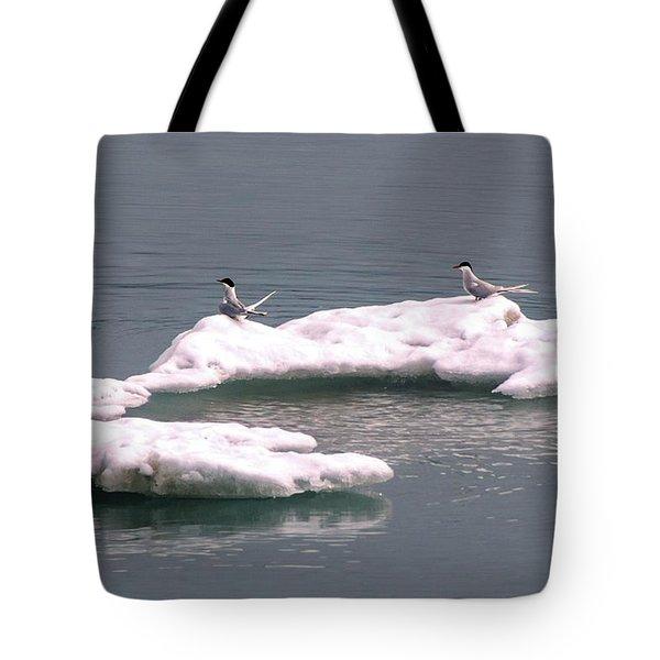 Arctic Terns On A Bergy Bit Tote Bag