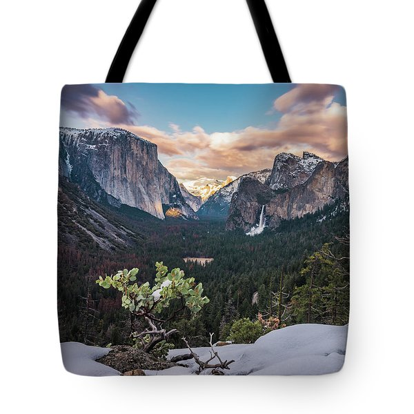 Artist Point Tote Bag