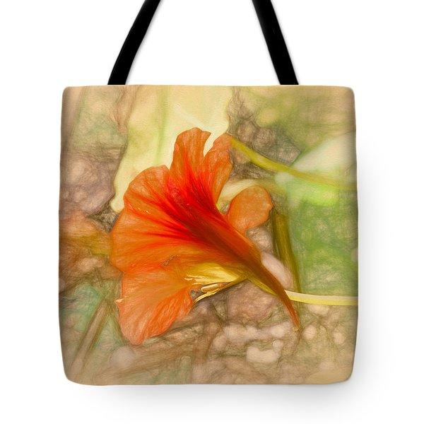 Artistic Red And Orange Tote Bag