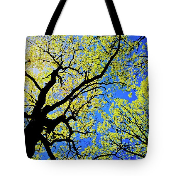 Artsy Tree Canopy Series, Early Spring - # 02 Tote Bag
