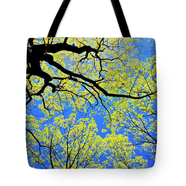 Artsy Tree Canopy Series, Early Spring - # 03 Tote Bag