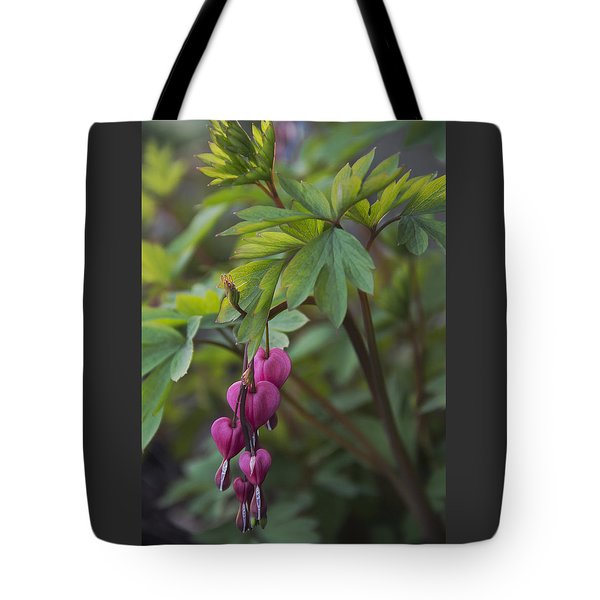 Heart Focused Tote Bag by Karen Casey-Smith