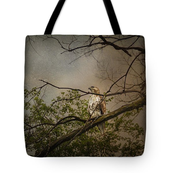 Higher Perspective Tote Bag by Karen Casey-Smith