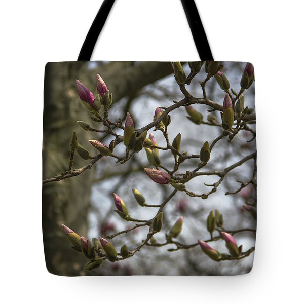 Today The World Is New Again Tote Bag by Karen Casey-Smith