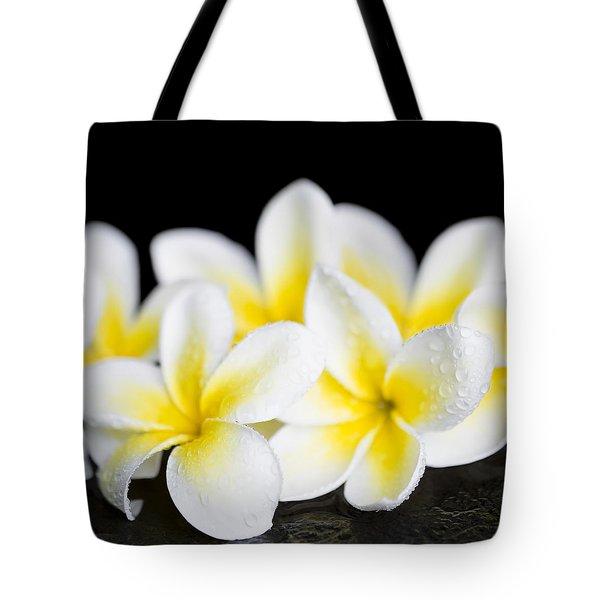 Tote Bag featuring the photograph Plumeria Obtusa Singapore White by Sharon Mau