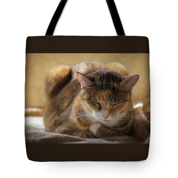 How To Meditate Tote Bag by Karen Casey-Smith