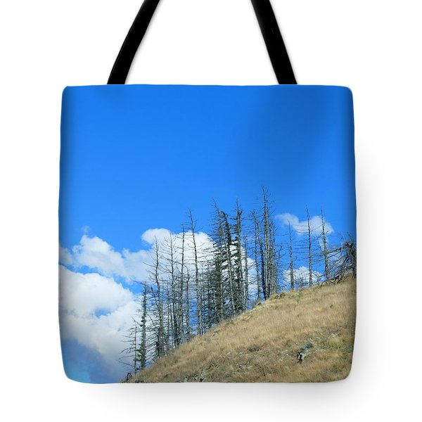 Tote Bag featuring the photograph At The End Of The World by Ivana Westin