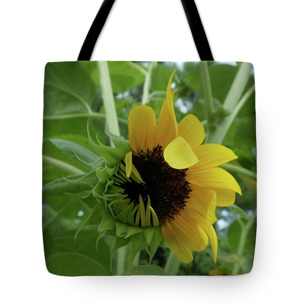 Sunflower Rising Tote Bag