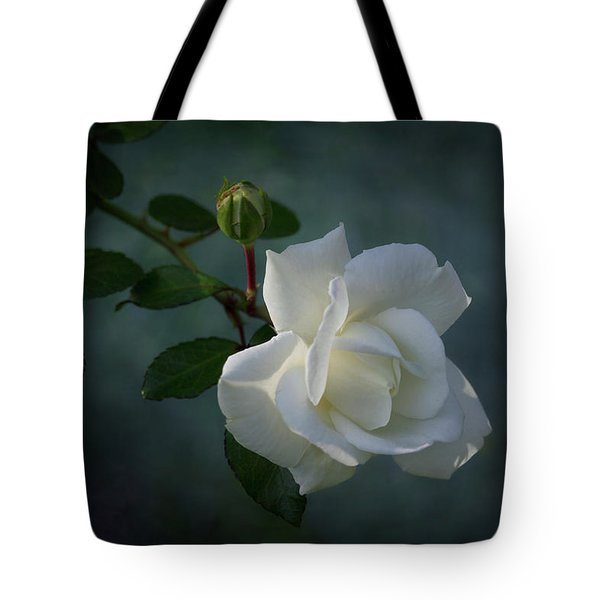 The Encouragement Of Light Tote Bag by Karen Casey-Smith