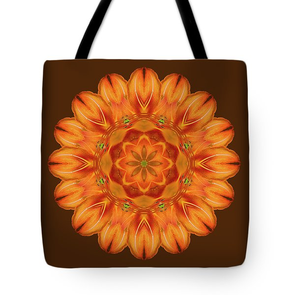 Selu's Song Tote Bag by Karen Casey-Smith