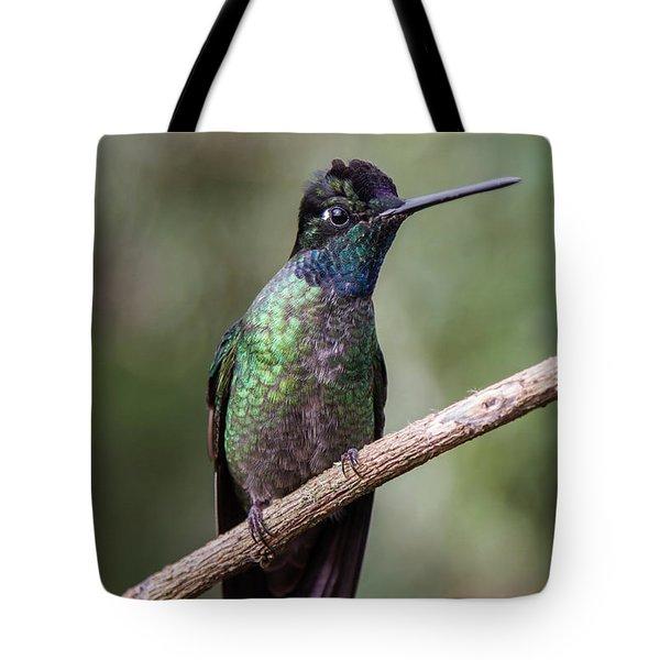 Magnificent Hummingbird 1 Tote Bag