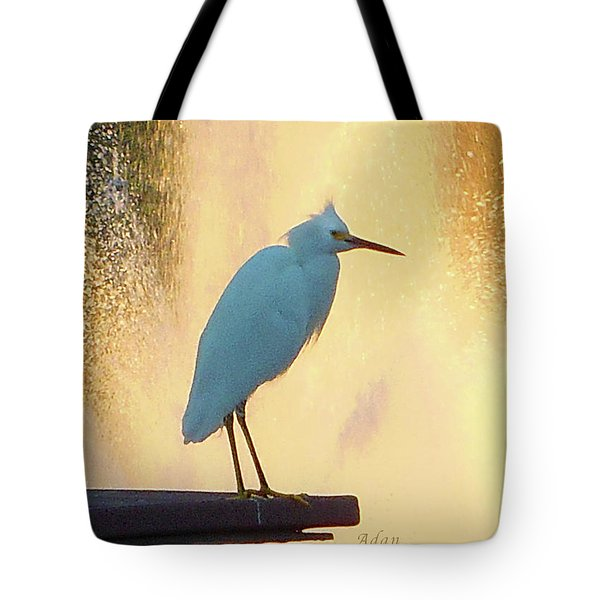 Birds And Fun At Butler Park Austin - Birds 3 Detail Macro Tote Bag by Felipe Adan Lerma
