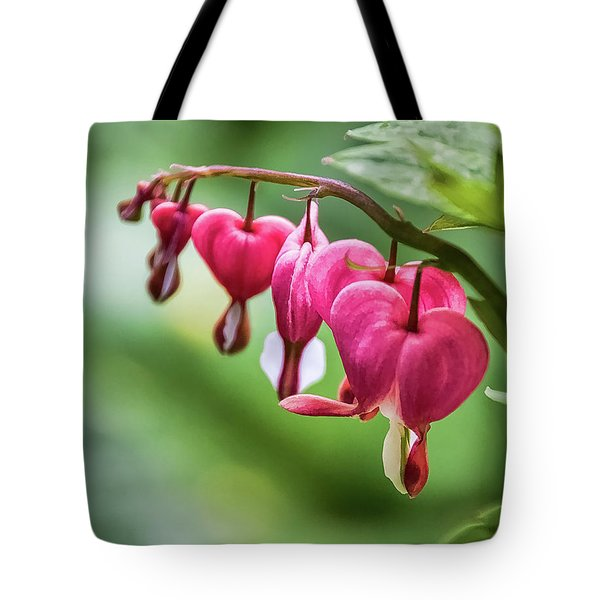 Softly Lucent  -  Tote Bag