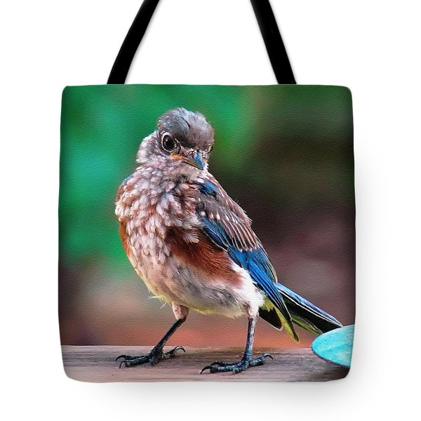 Tote Bag featuring the photograph I'm New Around Here by Sue Melvin