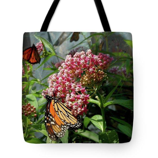 Monarch Arc Tote Bag
