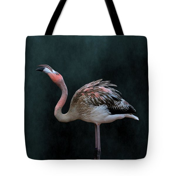Song Of The Flamingo Tote Bag