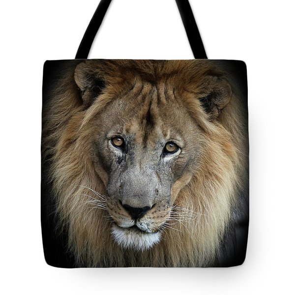 Sweet Male Lion Portrait Tote Bag