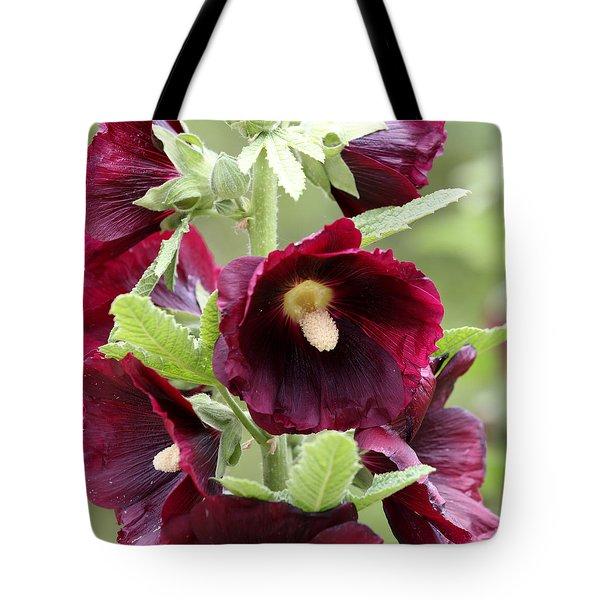 Red Hollyhock Flowers Tote Bag
