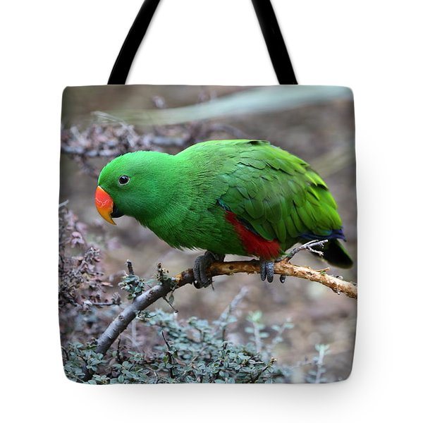 Green Male Eclectus Parrot Tote Bag