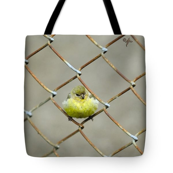 Fence Sitter Tote Bag by Arthur Fix