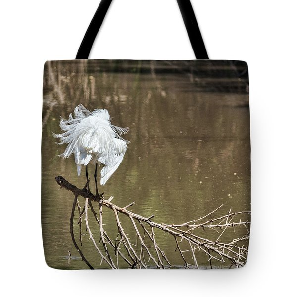Fluff Time Tote Bag by Bill Kesler