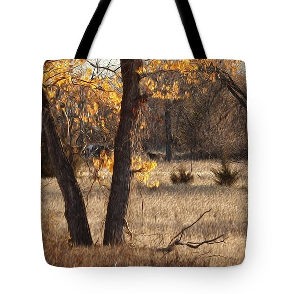 Shades Of Autumn Tote Bag by Bill Kesler