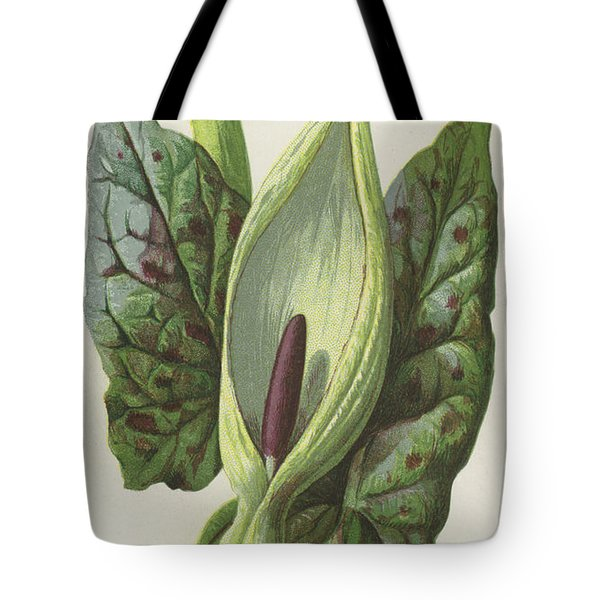 Arum, Cuckoo Pint Tote Bag by Frederick Edward Hulme