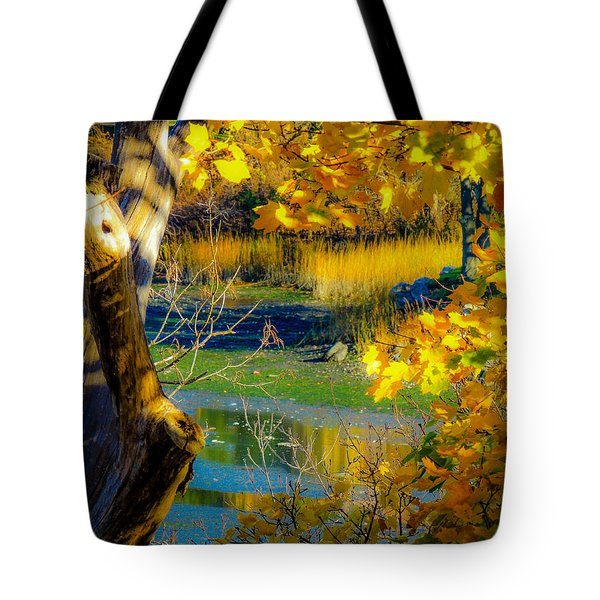 Tote Bag featuring the photograph As Fall Leaves by Glenn Feron