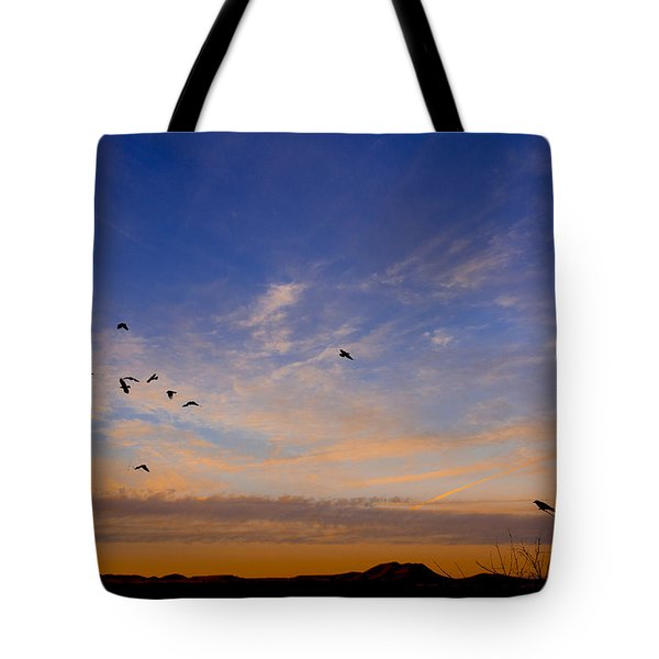 Tote Bag featuring the photograph As Night Falls by Barbara Manis