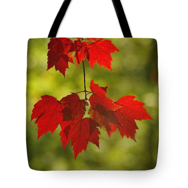 As Red As They Can Be Tote Bag by Aimelle