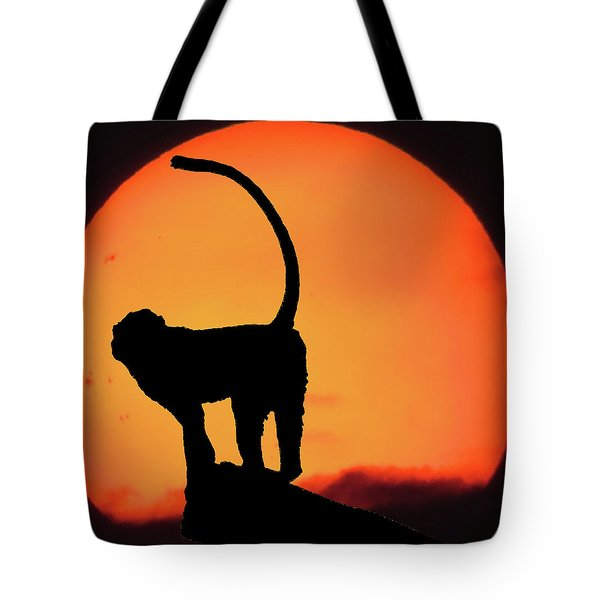 As The Day Ends Tote Bag