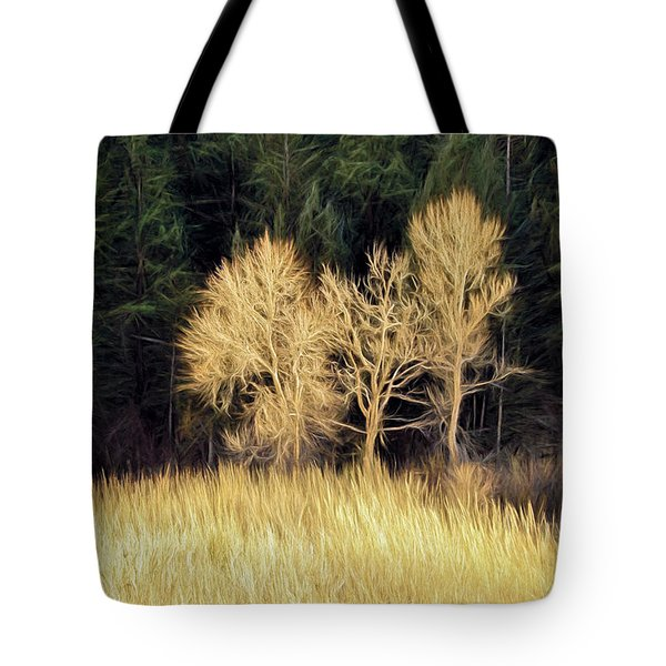 As The Sunset's Tote Bag by James Steele