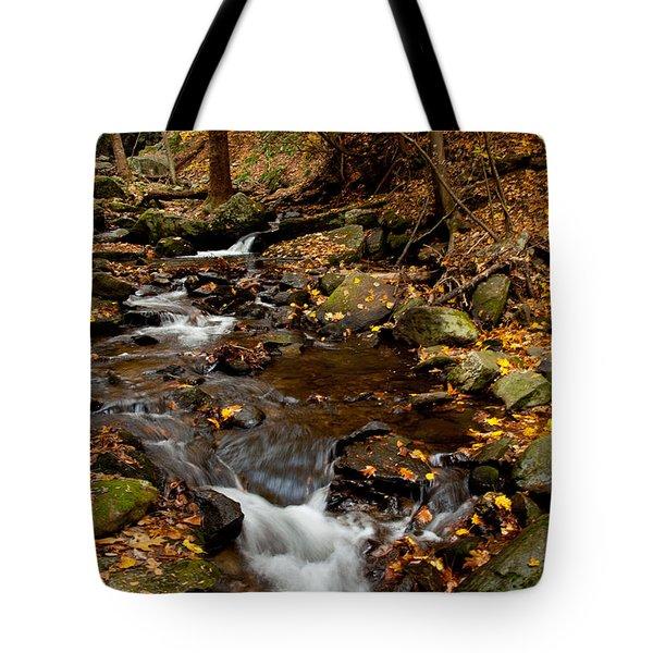 As The Water Runs Tote Bag by Karol Livote