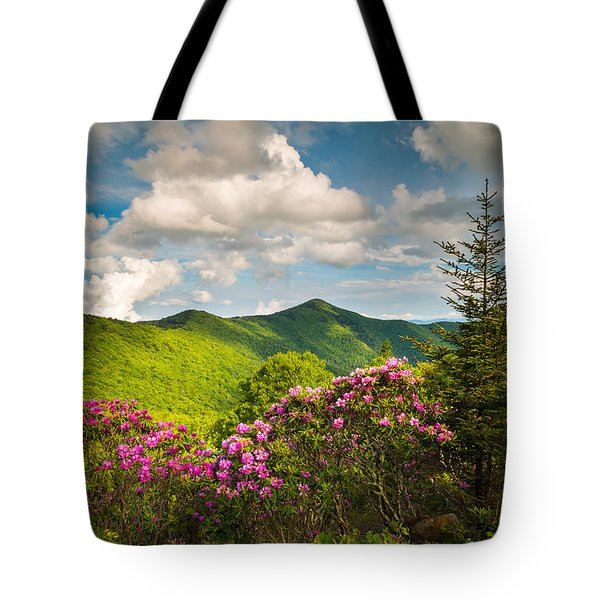 Asheville Nc Blue Ridge Parkway Pinnacle Tote Bag