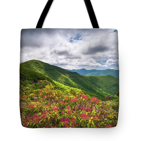 Asheville Nc Blue Ridge Parkway Spring Flowers North Carolina Tote Bag