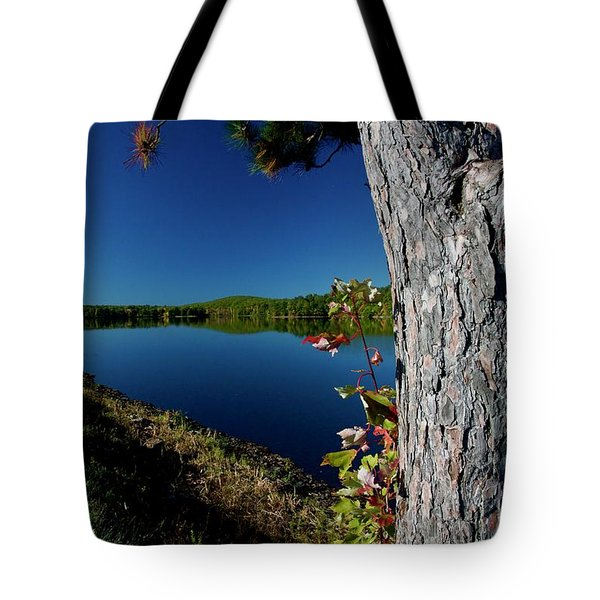 Ashley Reservoir Tote Bag