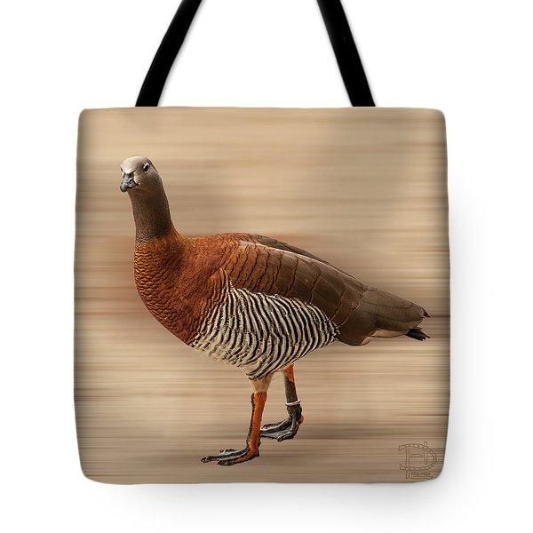 Ashy-headed Goose Tote Bag