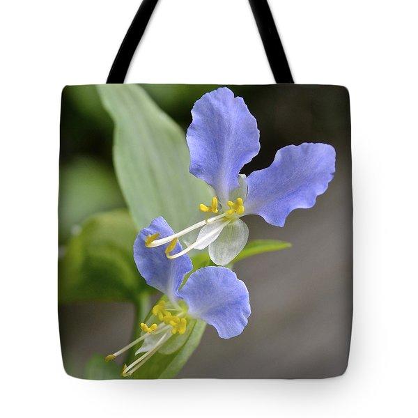 Virginia Dayflower Pair Tote Bag