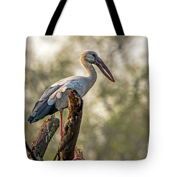 Asian Openbill Tote Bag by Pravine Chester