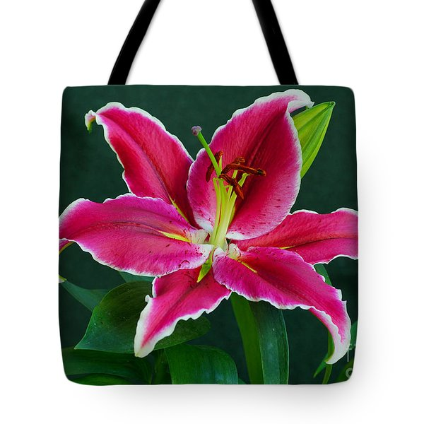 Tote Bag featuring the photograph Oriental  Lily Aka Stargazer by Larry Nieland