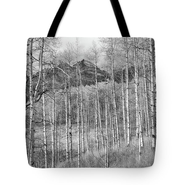 Tote Bag featuring the photograph Aspen Ambience Monochrome by Eric Glaser