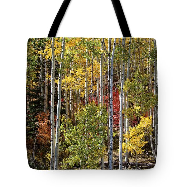 Aspen And Red Maple Tote Bag