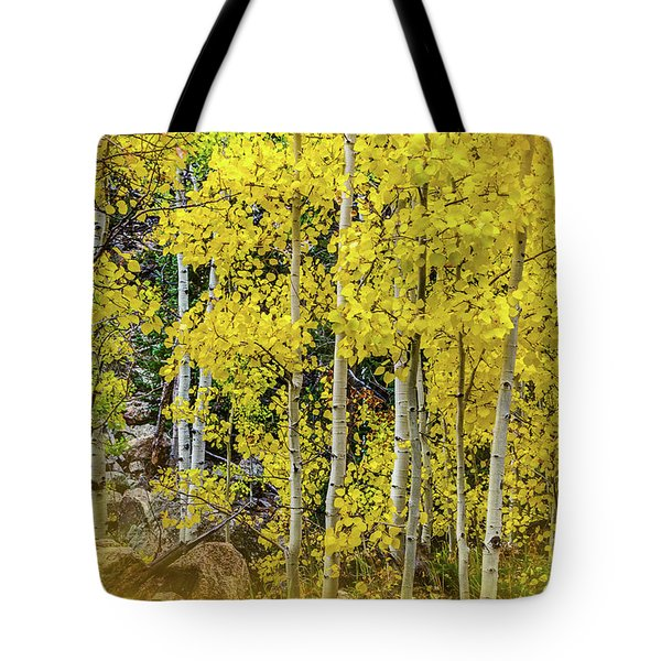 Tote Bag featuring the photograph Aspen Autumn Burst by Bill Gallagher