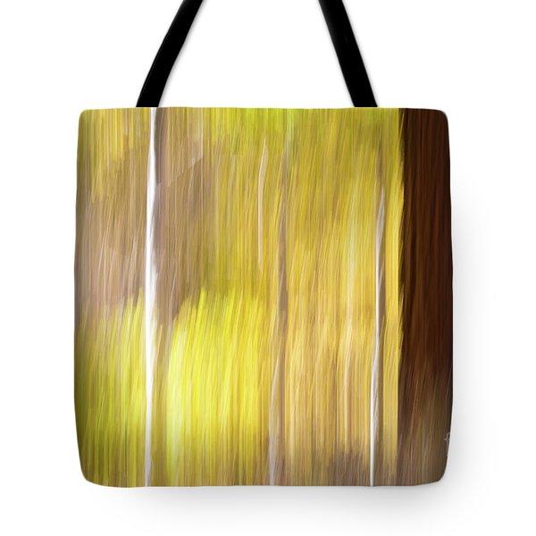 Tote Bag featuring the photograph Aspen Blur #1 by Vincent Bonafede