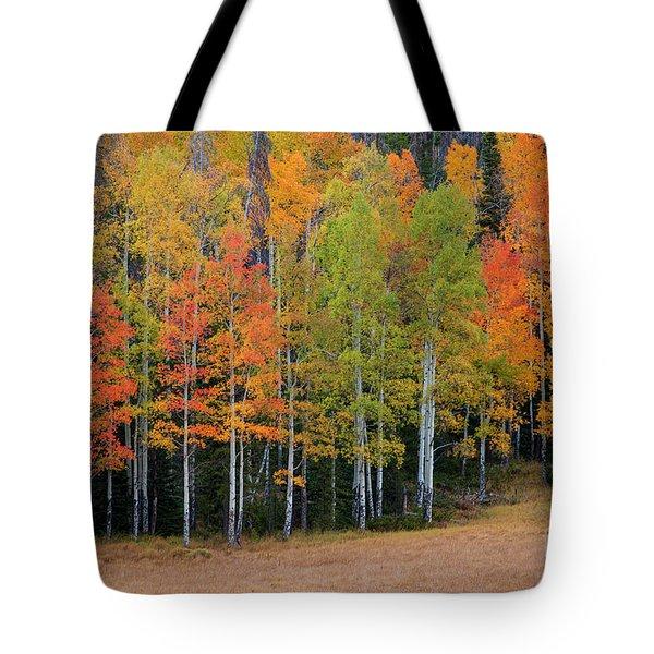 Aspen Color Tote Bag