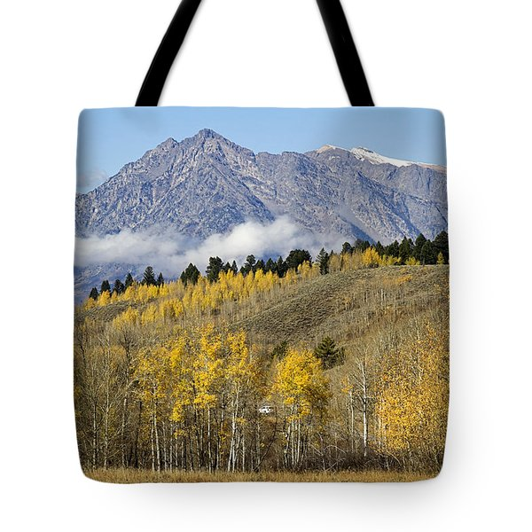 Aspen Colours Tote Bag by Shirley Mitchell